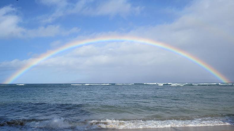 Surf Stay Play - Maui